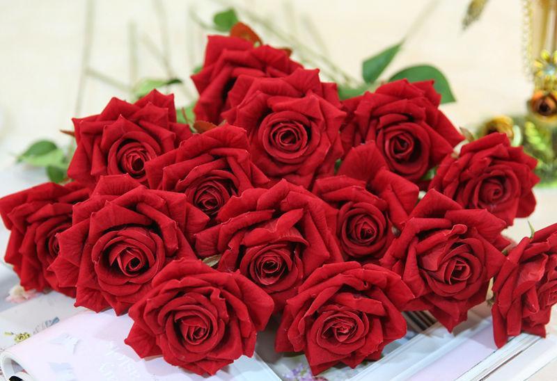 Огромный букет красных роз, поздравления