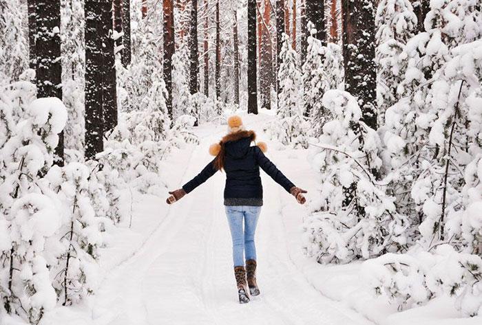 Заснеженный лес, зима, дорога