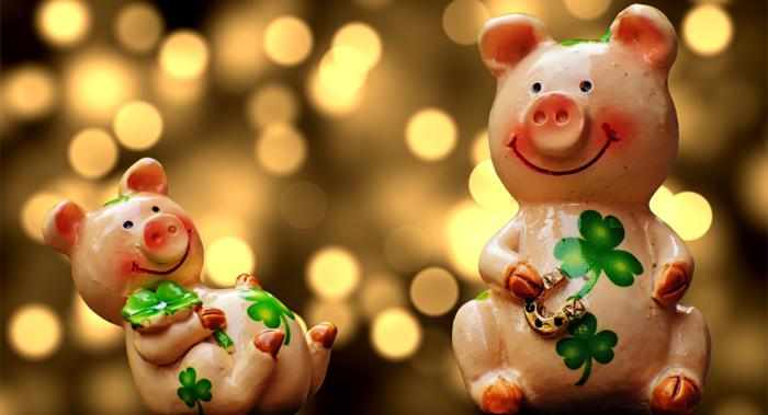 Новый год свиньи, свинка