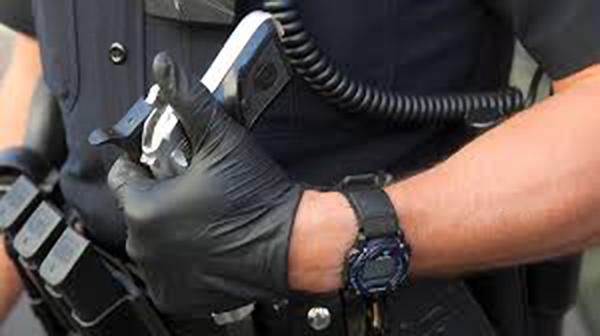 Полицейский, День полиции