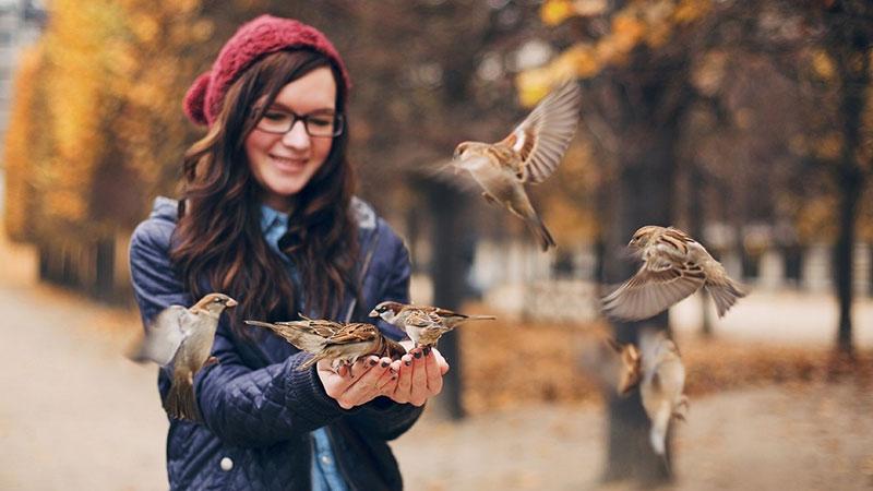 Жизнь фото. Осень, девушка птички.