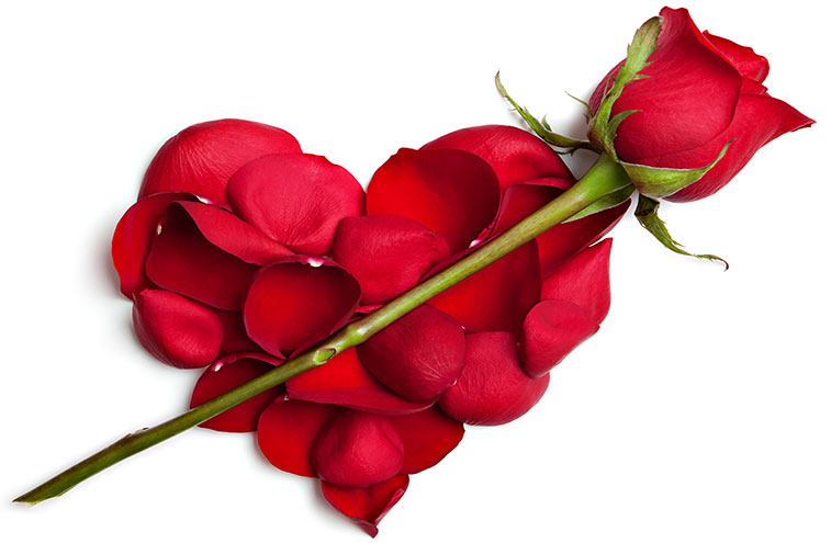 Сердечко, розы - С Днём Валентина!