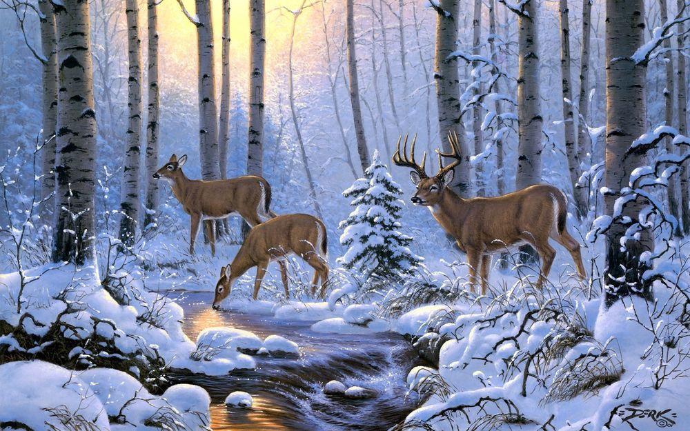 Зима, речка, олени