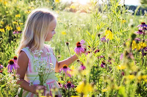 Лето, цветы, девочка